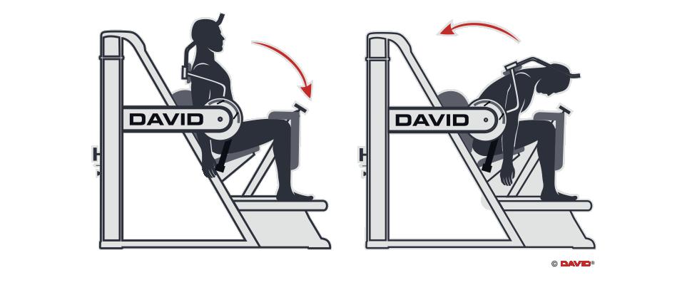 Gerätetraining Rücken